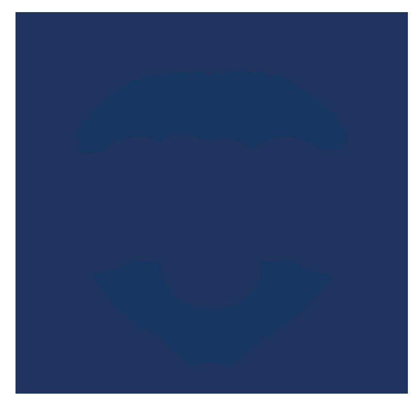 AMPE - Sociedade Brasileira de Cardiologia Update Online amplia a cobertura  de notícias científicas